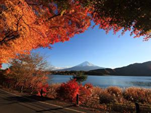 Fotos Landschaftsfotografie Herbst Gebirge See Strauch Ast Natur