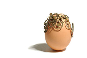 Bilder Nahaufnahme Ei