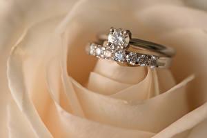 Bilder Nahaufnahme Schmuck Rosen Brillant Ring Heirat Blumen