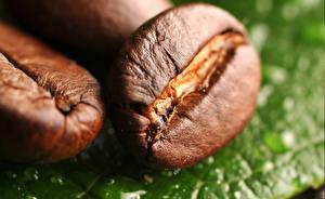 Fotos Kaffee Großansicht Getreide Lebensmittel
