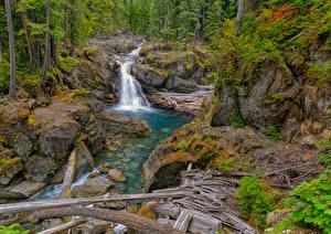 Hintergrundbilder USA Wasserfall Steine HDR Silver Falls, Packwood, Washington Natur
