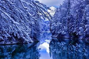Fotos Winter Wasser Schnee Ast Natur