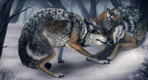 Pictures Pictorial art Wolves Winter 2 Animals