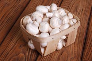 Hintergrundbilder Pilze Zucht-Champignon Weidenkorb Lebensmittel
