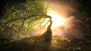 Fotos Bäume Ast Fantasy Mädchens