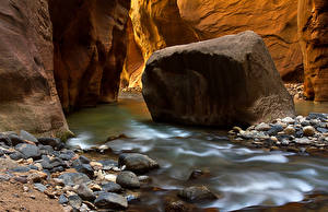 Fotos Vereinigte Staaten Flusse Steine Park Zion-Nationalpark Canyon Utah Natur