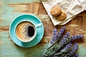 Bilder Kaffee Lavendel Kekse Untertasse Lebensmittel Blumen