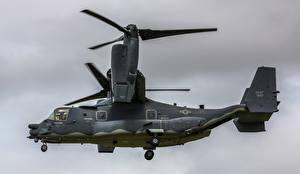 Bilder Wandelflugzeug Bell V-22 Osprey Luftfahrt