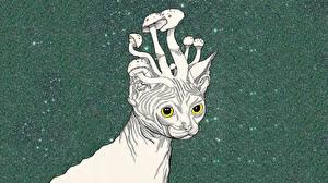 Bilder Katzen Pilze Natur Gezeichnet psychedelic ein Tier