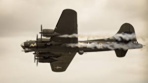 Fotos Flugzeuge Boeing Boeing B-17 Flying Fortress