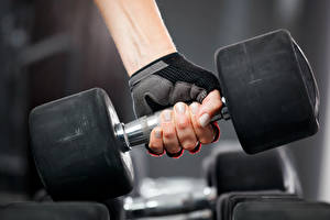 Pictures Fitness Dumbbells Hands weight gloves Sport