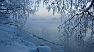 Hintergrundbilder Winter Flusse Eis Ast Natur