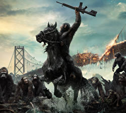 Image Monkeys Assault rifle Bridges Dawn of the Planet of the Apes