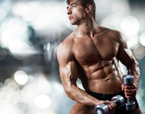Hintergrundbilder Mann Fitness Bodybuilding Hantel Muskeln Hübscher Sport