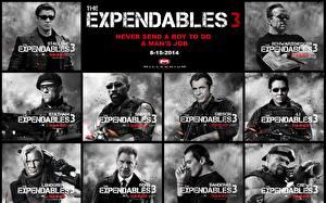Bureaubladachtergronden The Expendables Mel Gibson Sylvester Stallone Arnold Schwarzenegger Jet Li Jason Statham Mannen Films Beroemdheden