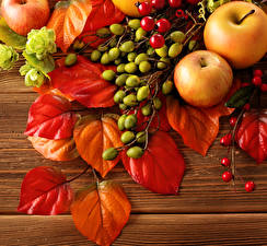 Fotos Obst Äpfel Herbst Blatt Lebensmittel Natur