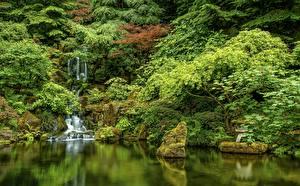 Hintergrundbilder USA Garten HDR Bäume Japanese Gardens, Portland, Oregon Natur