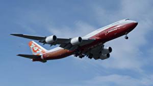 Bilder Flugzeuge Verkehrsflugzeug Boeing BOEING 747-800