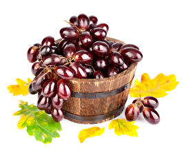 Fotos Obst Weintraube Blatt Lebensmittel