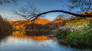 Hintergrundbilder Gebirge See Landschaftsfotografie Ast Natur