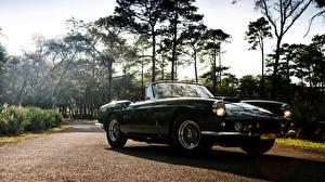 Bilder Ferrari Cabriolet Grün 1961 Superamerica 400 SWB Autos