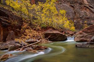 Bilder USA Park Flusse Zion-Nationalpark Felsen Utah