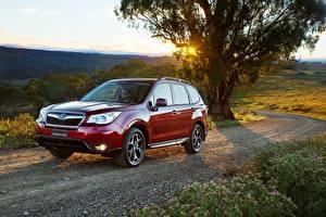 Fotos Subaru Wege Rot 2014 Forester AU-spec Autos