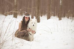 Images Dogs Winter Injun Snow Samoyed dog Girls Animals