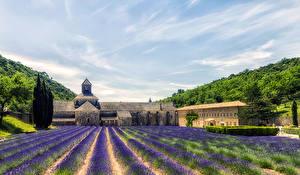 Hintergrundbilder Frankreich Lavendel Himmel Acker Provence HDRI  Natur
