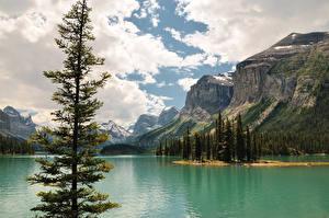 Hintergrundbilder Kanada See Gebirge Landschaftsfotografie Bäume Wolke Jasper park Maligne Lake
