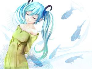 Tapety na pulpit Vocaloid Hatsune Miku Ryba museum2088 Dziewczyny