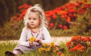 Fotos Kleine Mädchen Sitzt Gras kind