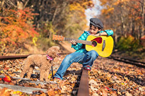 Hintergrundbilder Hund Herbst Eisenbahn Gitarre Pudel Junge Schienen Kinder Tiere