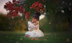 Fotos Asiatische Kleine Mädchen Ast Gras Kleid Brünette Kinder