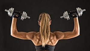 Fotos Fitness Hantel Haar Rücken dumbbells fitness sportswear muscular back sportliches Mädchens
