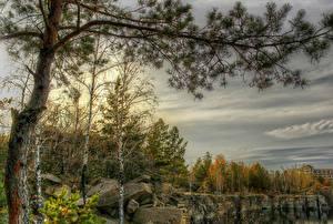 Fotos Landschaftsfotografie Herbst Steine Bäume Ast HDR ural Natur