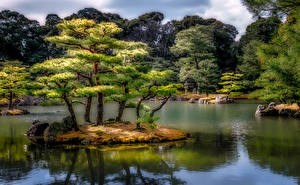 Wallpapers Japan Gardens Pond Kyoto Trees HDR Nature