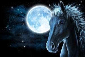 Images Horses Painting Art Night time Moon Head Animals