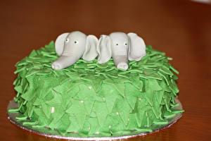 Bilder Süßigkeiten Torte Elefanten Design Farbigen hintergrund Lebensmittel