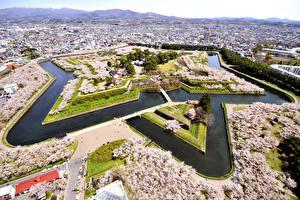 壁纸、、日本、建物、公園、メガロポリス、上から、Goryokaku Park-Fort Hakodate、都市