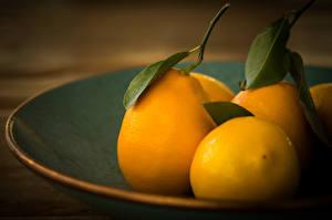 Hintergrundbilder Zitrone Obst Blatt Lebensmittel