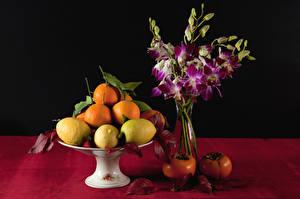 Picture Still-life Fruit Lemons Orange fruit Kaki Vase Food Flowers