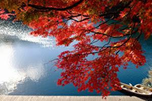 Hintergrundbilder Japan See Boot Ast Ahorne Lake Bishamon Bandai Fukushima Natur