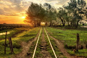 Images Railroads Sunrises and sunsets Trees Nature