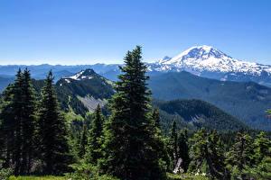 Wallpaper USA Landscape photography Parks Mountain Forest Sky Alaska Spruce Trees State Park Nature