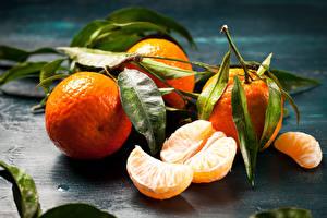 Bilder Obst Zitrusfrüchte Mandarine Blattwerk Lebensmittel