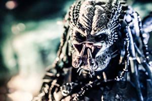 Image Predator - Movies Monster Fantasy