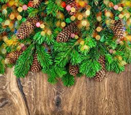 Hintergrundbilder Neujahr Zapfen Tannenbaum Ast
