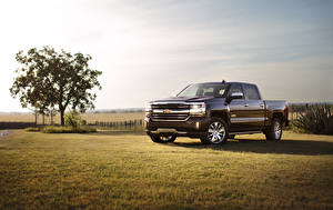 Wallpaper Chevrolet Tuning Metallic Grass 2016 Silverado 1500 High Country automobile