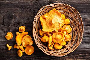 Bilder Pilze Natur Großansicht Weidenkorb